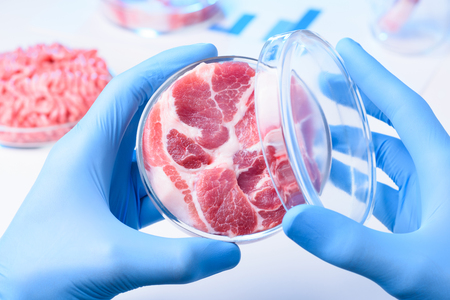 Meat sample in open laboratory Petri dish. Animal cell cultured clean meat concept. Stok Fotoğraf