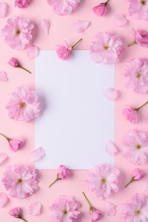 Blooming sakura floral pattern with blank white place for text flat lay top view
