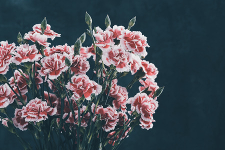Carnation flowers bouquet retro color toned dark moody background.