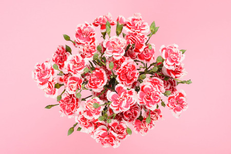 Bouquet of carnation flowers on pastel pink background top overhead view Imagens