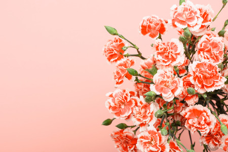 Bouquet of carnation flowers on pastel pink background top overhead view with copy space