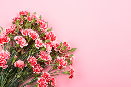 Bouquet of carnation flowers on pastel pink background. Top view with copy-space.