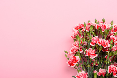 Bouquet of red and white carnation flowers on pastel pink background. Top view with copy-space. Imagens