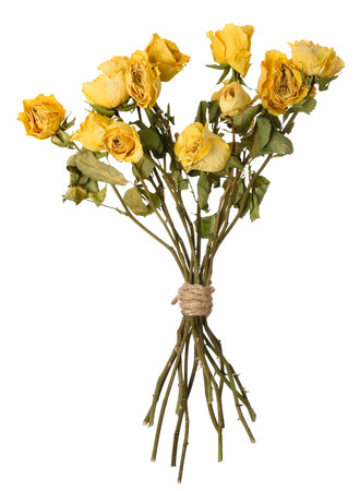 Dried yellow rosed bouquet isolated on white. Stock Photo