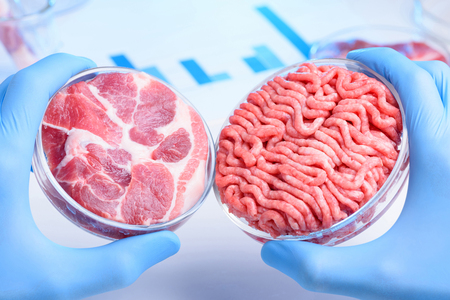 Meat sample in Petri dishes. Cultured cell lab meat concept. Stockfoto