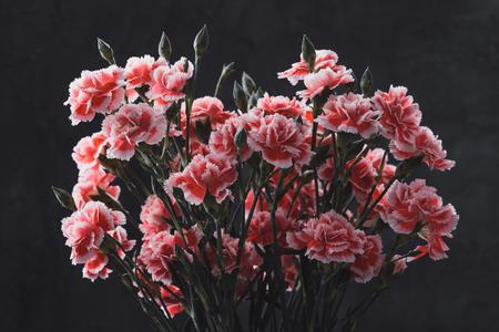Carnation flowers bouquet vintage color toned over dark moody art background