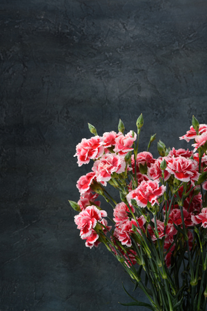 Carnation flowers bouquet over dark moody background vertical with copy space.