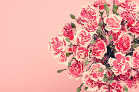 Bouquet of beautiful carnation flowers in pastel pink colors with copy-space.