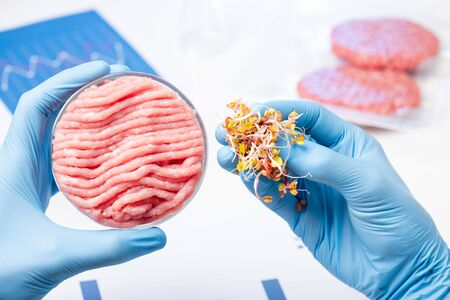 Plant-based meat substitute research