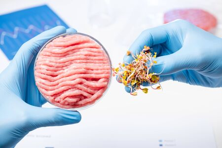 Scientist show pinch of plant material for animal meat substitute. Artificial laboratory vegetable source based meat research concept. 写真素材