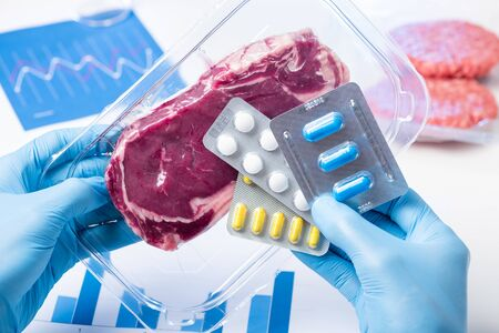 Packaged meat and pills in lab scientist hands. Livestock antibiotic use concept.