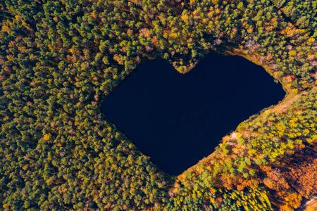 Aerial view of forest lake in a shape of heart. Romantic love pond hidden place in autumn woods drone photo. Reklamní fotografie