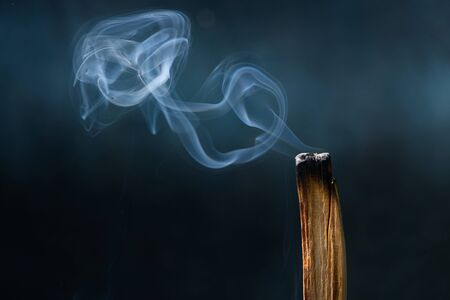 Palo Santo, Bursera graveolens, holy sacred tree stick, burning with aroma smoke