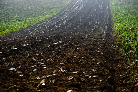 Field arable agricultural land ploughed to grow crops.