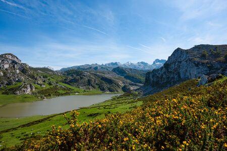 Ercina lake in Picos de Europa national park in Asturias Spain