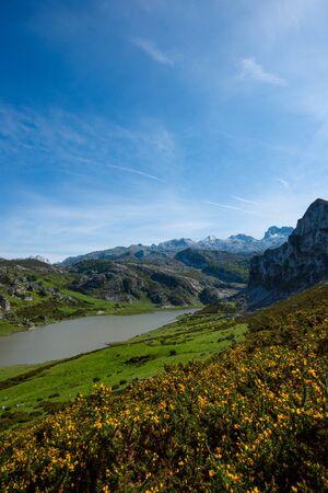 Ercina lake in Picos de Europa national park in Asturias, Spain