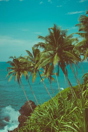 Tropical coast with coconut palm trees over the ocean vintage color toned