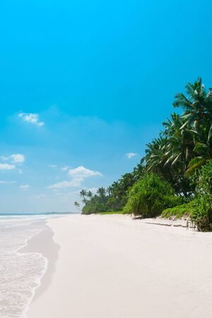 Tropical vacations beach, empty clean white sand and coconut palm trees
