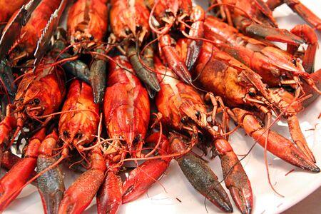 Crayfish Shrimps