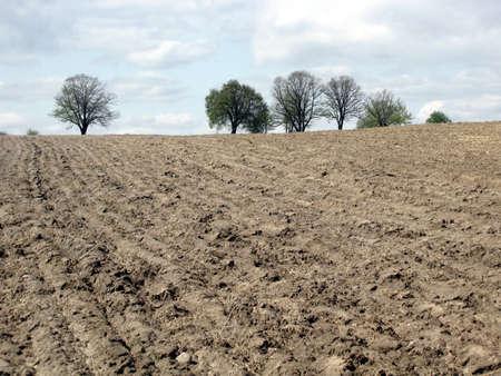 plowed: view of plowed field Stock Photo