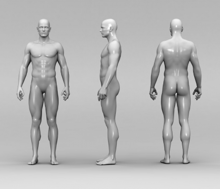male body: Athletic male human anatomy Stock Photo