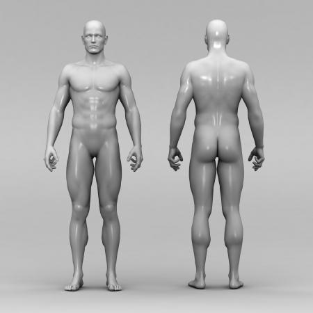 Athletic male human anatomy Stock Photo