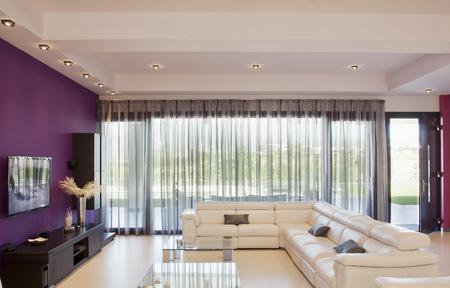sectional door: Sectional sofa in luxury modern livingroom