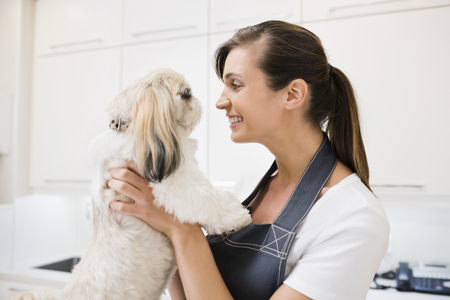 groomer: Groomer holding dog in office