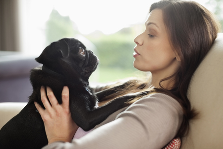 admiring: Woman relaxing with dog on sofa