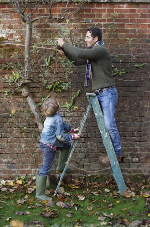 Father and son working in garden LANG_EVOIMAGES