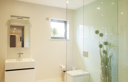 bathroom mirror: Shower and sink in modern bathroom