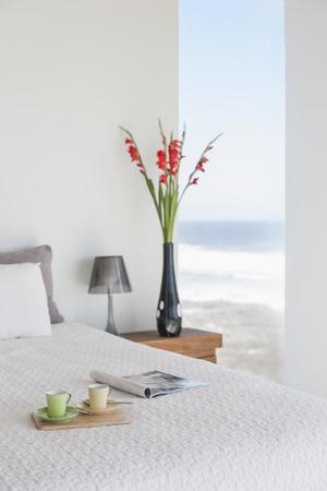 comfort food: Breakfast tray on bed in modern bedroom with ocean view LANG_EVOIMAGES