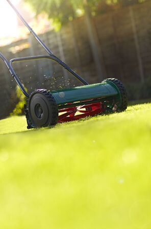 Close up of lawnmower on green lawn