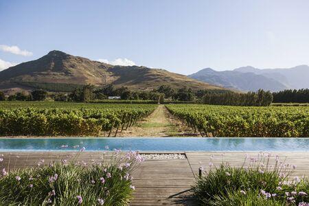 Luxury lap pool overlooking vineyard and mountains