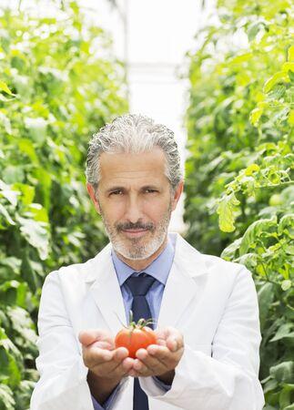Portrait of botanist holding ripe tomato in greenhouse
