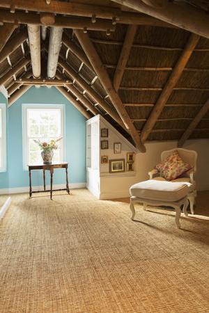 attic: Luxury attic