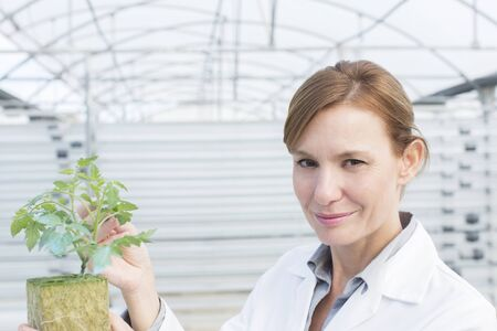 Portrait of confident scientist with plant in greenhouse