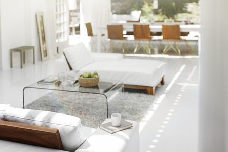 open floor plan: Sofas, coffee table and rug in modern living room LANG_EVOIMAGES
