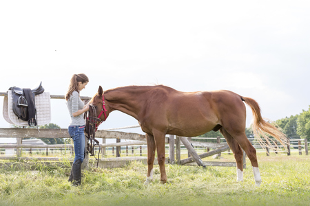 Woman preparing horse for horseback riding in rural pasture