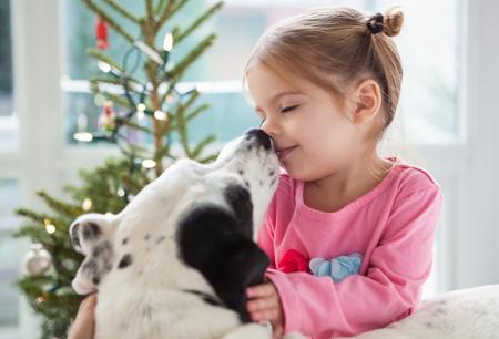 Dog licking girl's face