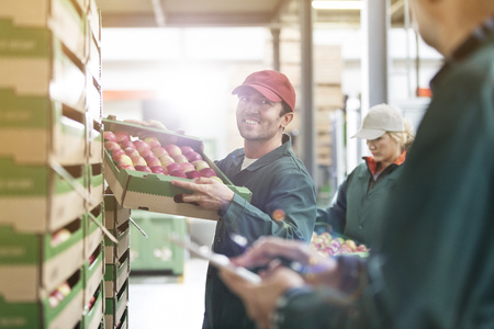 le cap: Smiling male worker carrying box of apples in food processing plant LANG_EVOIMAGES