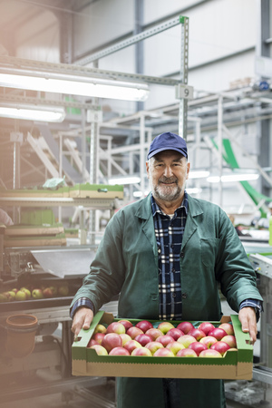 le cap: Portrait smiling worker carrying box of apples in food processing plant