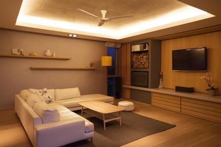 woodburner: Illuminated tray ceiling over home showcase living room
