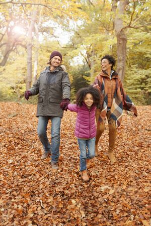 brazilian ethnicity: Young family holding hands walking in autumn woods LANG_EVOIMAGES