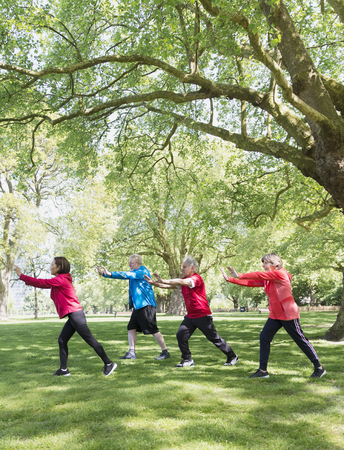 Active seniors practicing tai chi in park under tree LANG_EVOIMAGES