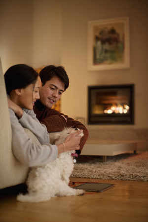 Couple petting dog in living room