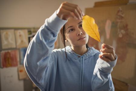 Curious female artist examining autumn leaf