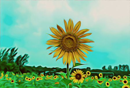 Oil Painting Sunflower in field
