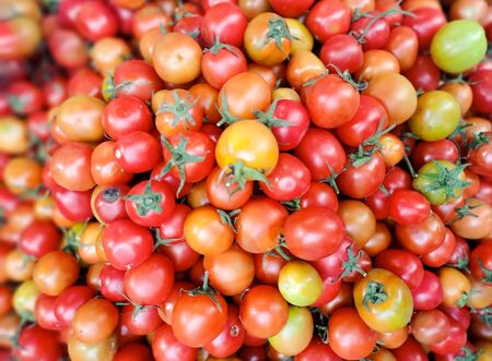 Red tomatoes of different sizes
