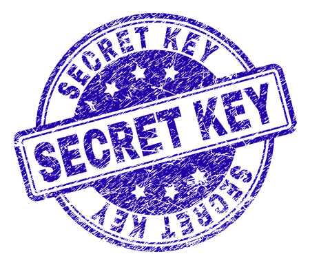 SECRET KEY stamp seal watermark with grunge texture. Designed with rounded rectangles and circles. Blue vector rubber print of SECRET KEY caption with grunge texture.